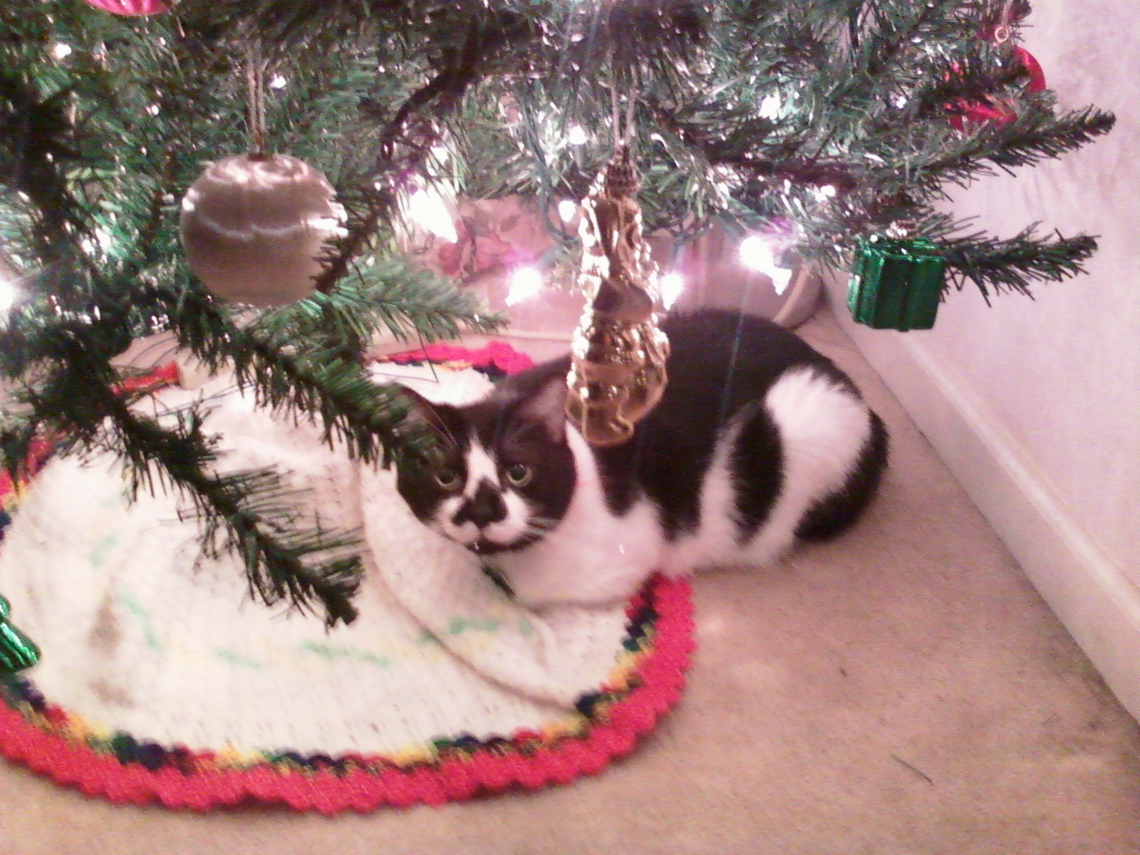 Buy Fake Christmas Tree