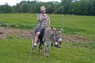 Funny Donkey Man Nice Images