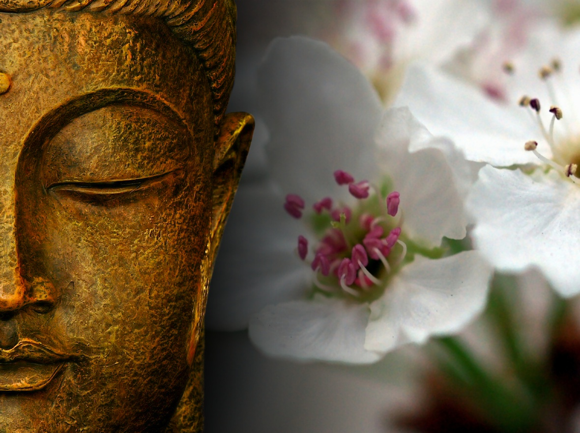 Espacio zen so hum somos lo que pensamos - Espacio zen ...