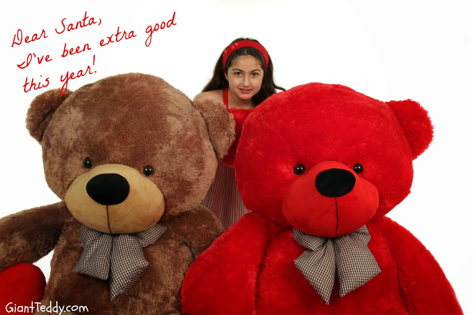 welcome to the giant teddy blog