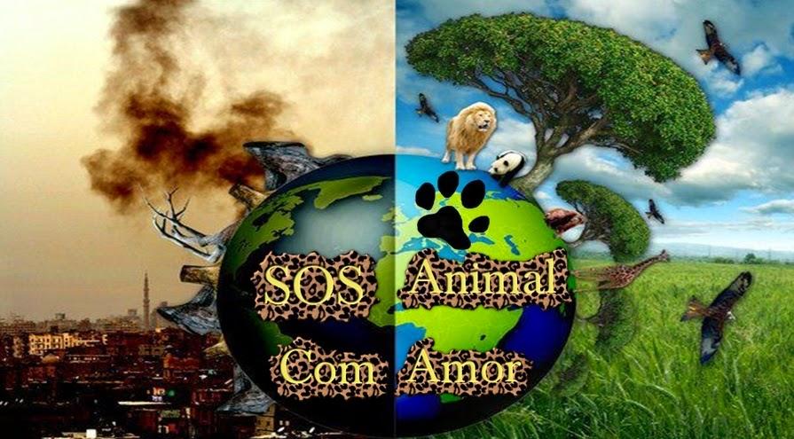 SOS Animal  com amor