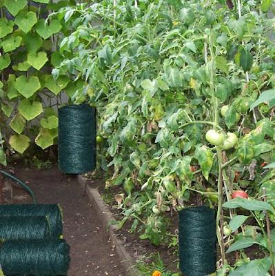 sznurek ogrodniczy