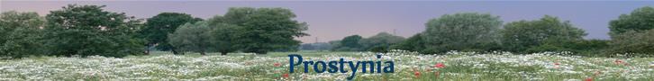 Prostynia
