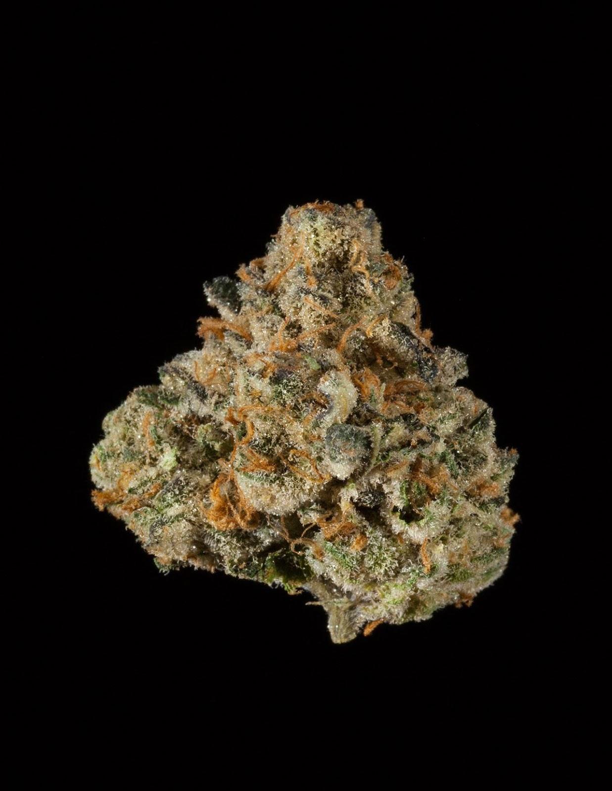 Alpha Mint GSC | Medic