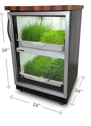 Tobi Brockway Interiors: Indoor vegetable garden for your kitchen