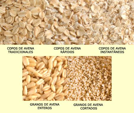Ciencia de los alimentos elaboracion de avena - Copos de avena bruggen ...