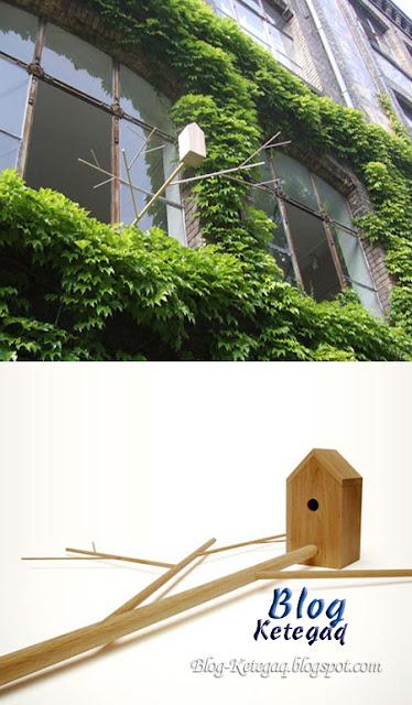 rekaan rumah burung yang unik dan kreatif