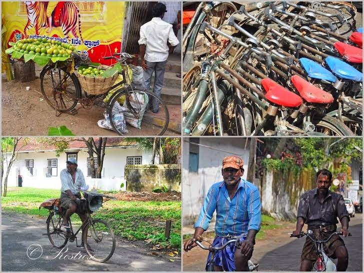Mein Südindien-Gastposting im Blog bikelovin