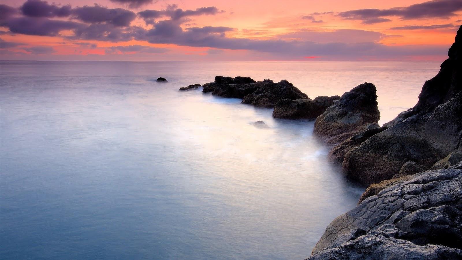 Coasty Rocks