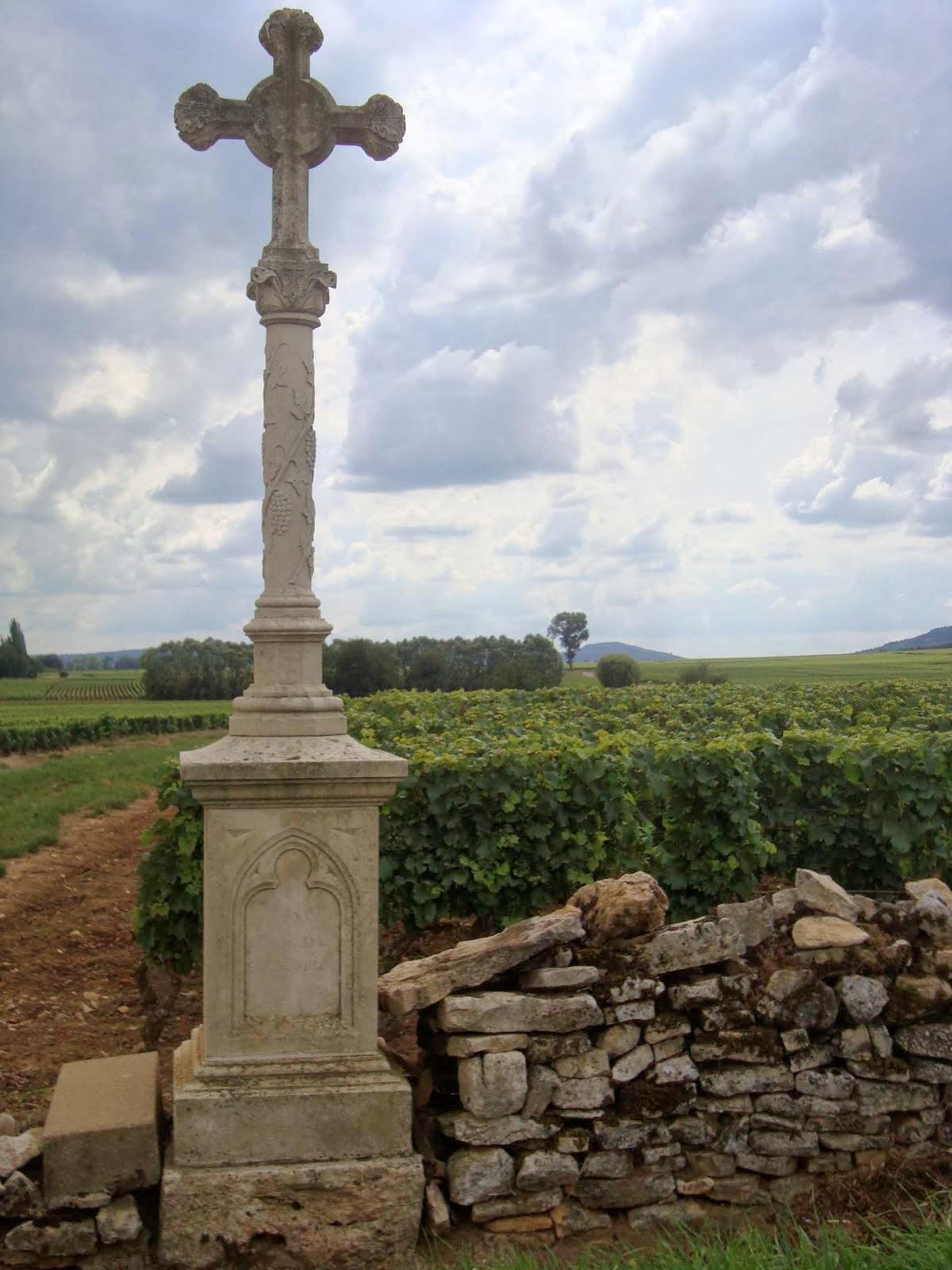 Burgundy Vineyards