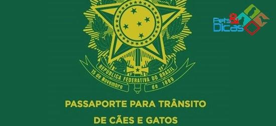 Passaporte para cães e gatos deve entrar em vigor em fevereiro