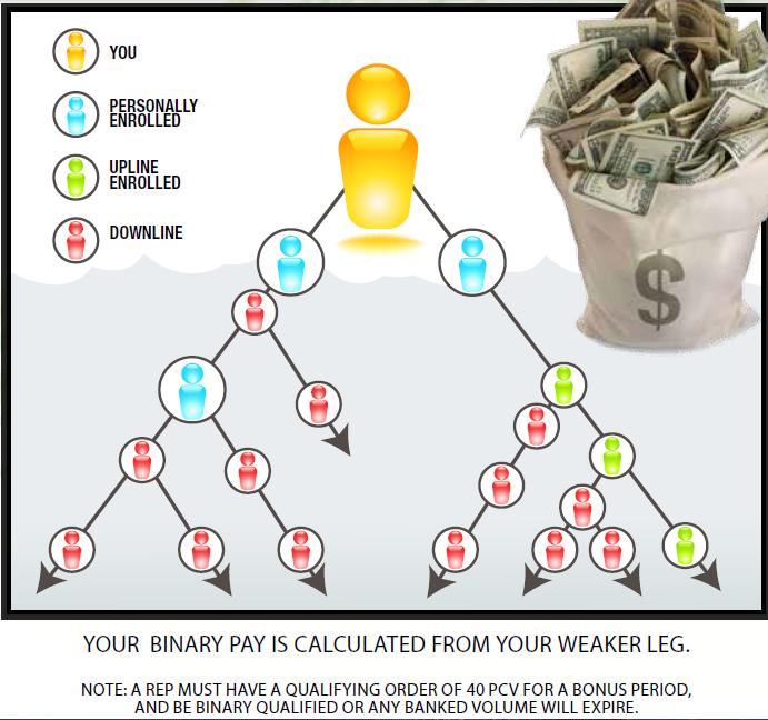 Binary bonus meaning