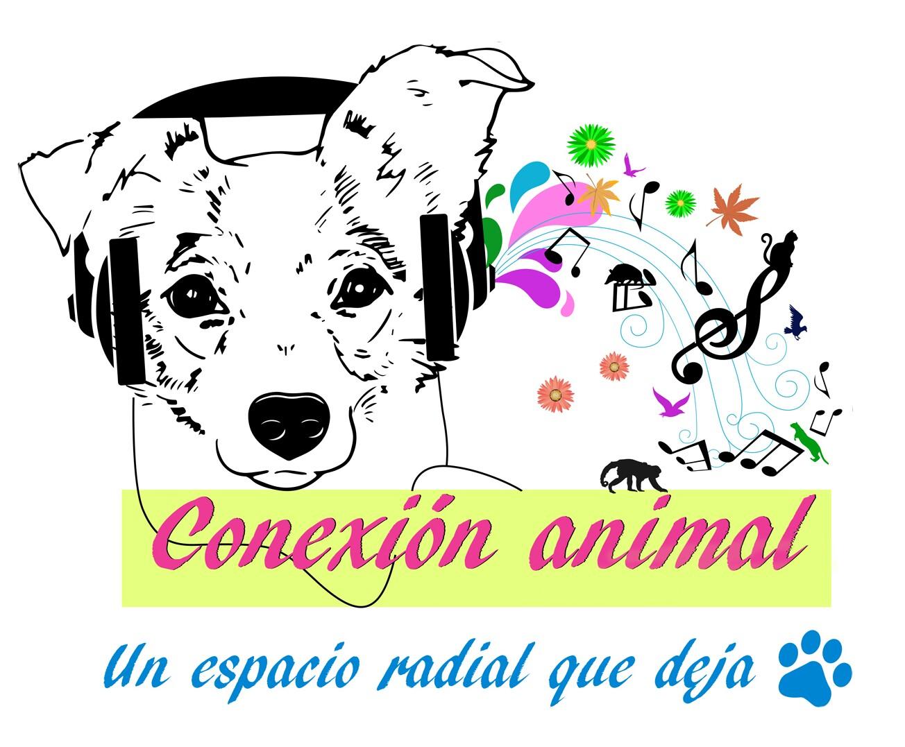 Conexión Animal