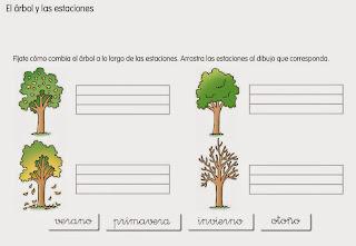 http://www.ceiploreto.es/sugerencias/cp.juan.de.la.cosa/Actividades%20PDI%20Cono/01/10/02/011002.swf