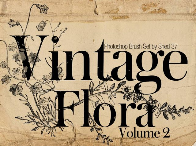 Vintage Flora Photoshop Brushes Vol. 2