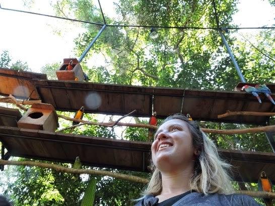 Vlog - Parque das Aves- Cataratas - Paraguai e Argentina
