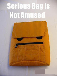 serious bag is not amused
