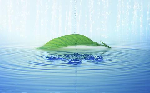禪宗第八十五代宗師 悟覺妙天禪師偈語 :「身體常青,心裡常靜,身心清淨,自見真心。」「身體常青」是體內無地獄,「心裡常靜」是心中無眾生。「身心清淨,自見真心」是萬德莊嚴,自能證得真如佛性。修行是一步一腳印,認真踏實地走過,每一個足跡都會是難忘的深刻,像是一杯水的冷熱,也只有喝過的人才最知道。