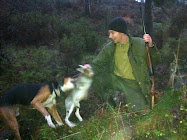Ekko 28/1 2002 - 3/8  2012