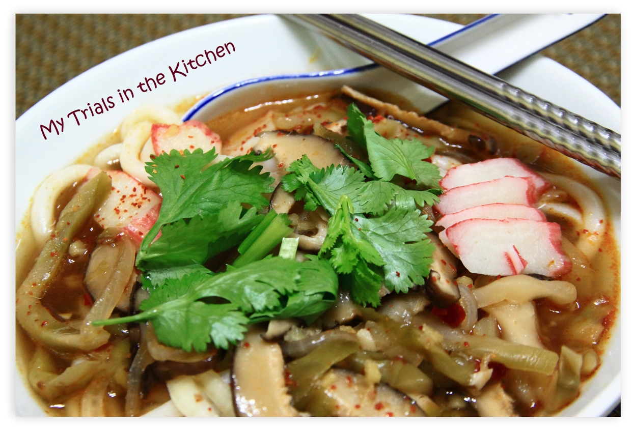 My Trials in the Kitchen: Spicy Udon Noodle Soup - Recipes to Keep You ...