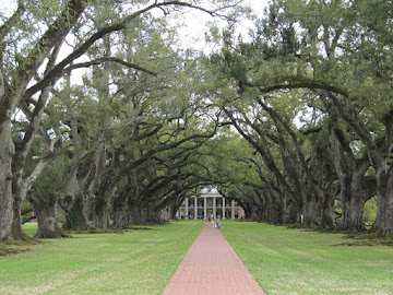 Oak Alley Plantation - 13 mars