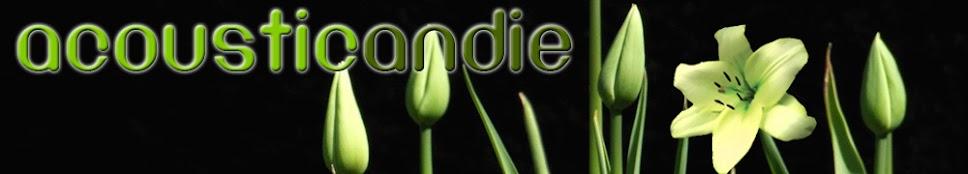 acousticandie