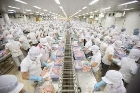 Gần 99 nghìn người đi xuất khẩu lao động trong năm 2014