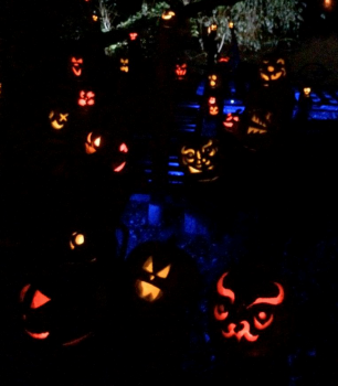 Jack-o-Lanterns - Halloween New England