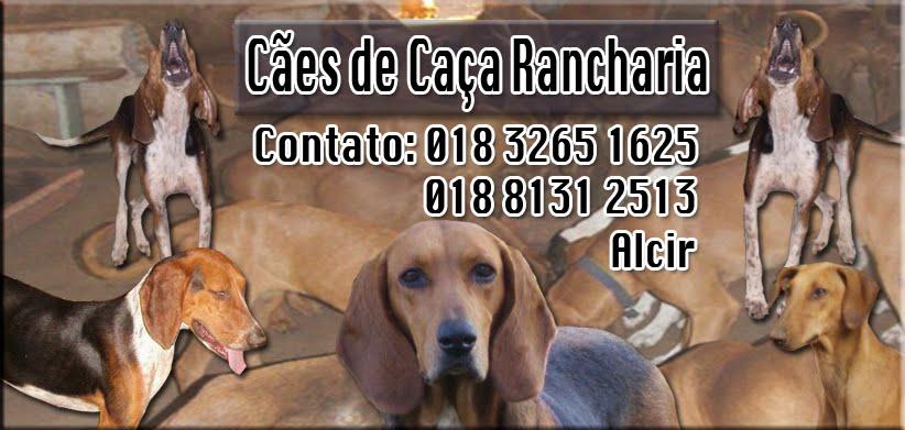 Cães de Caça Rancharia