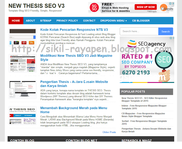 New Thesis SEO V3