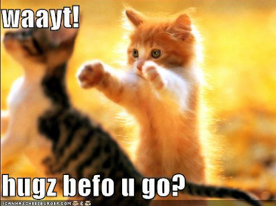 Waayt! Kitteh hugs befor you go?