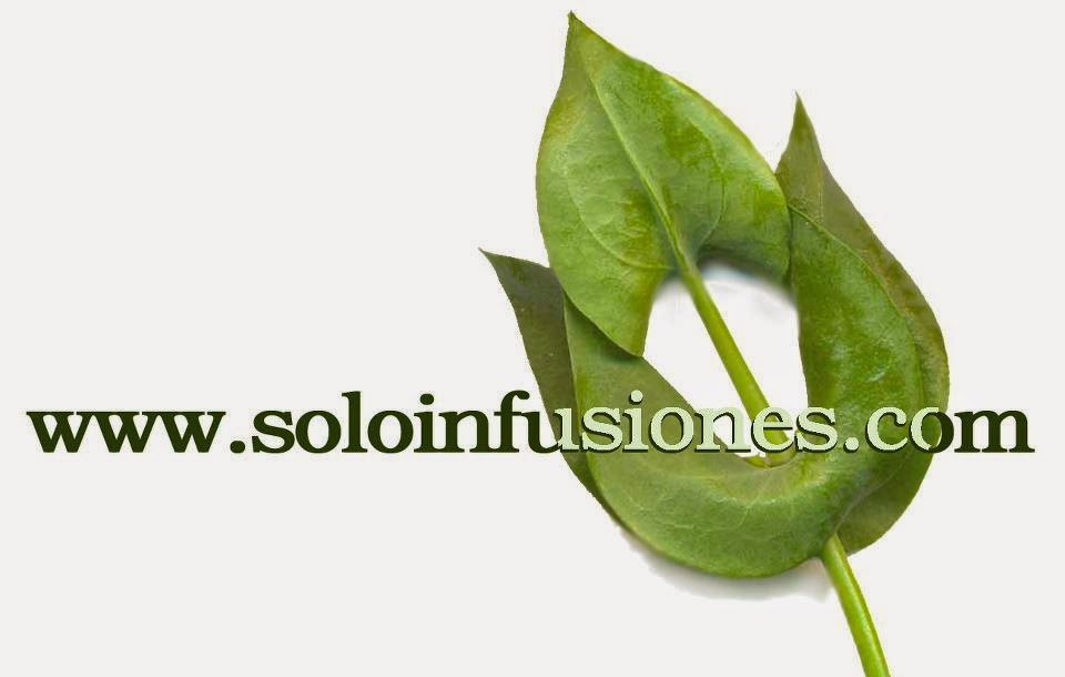 Soloinfusiones.com