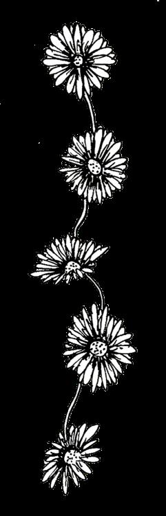 Secret Hipster: Junk Transparent Black And White Flowers Tumblr