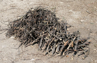 The pile of chopped twigs