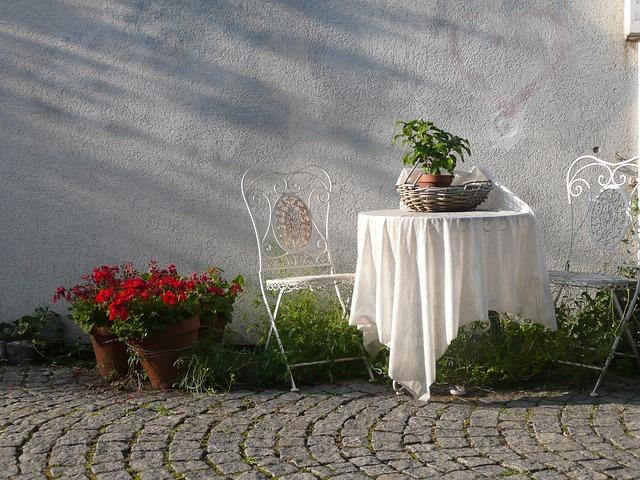 jardinet avec plantes en pots