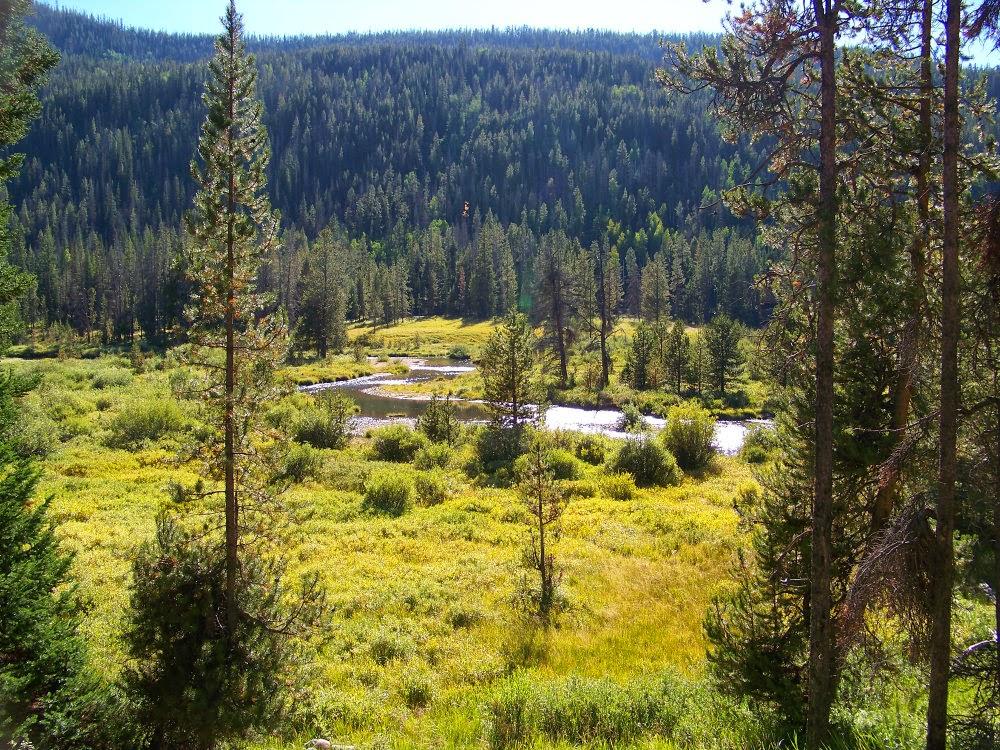 Runaway Bridal Planner: Christmas Meadows, Utah High Uinta Mountains
