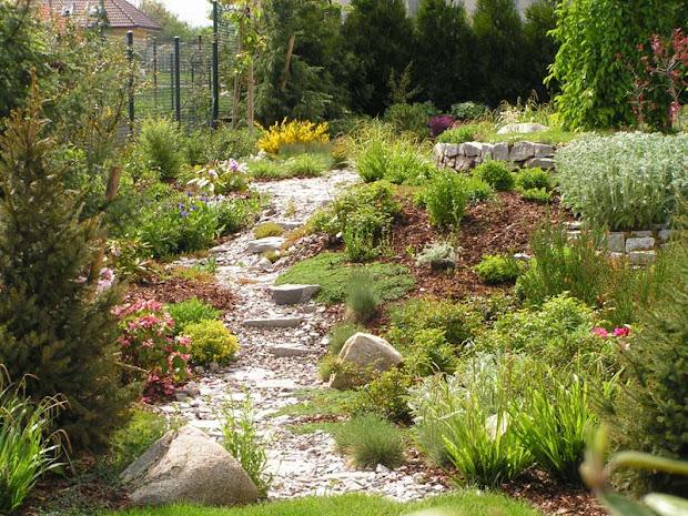 garden design ideas - edging