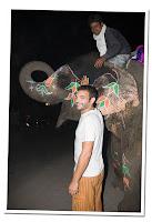 Jaipur elefante