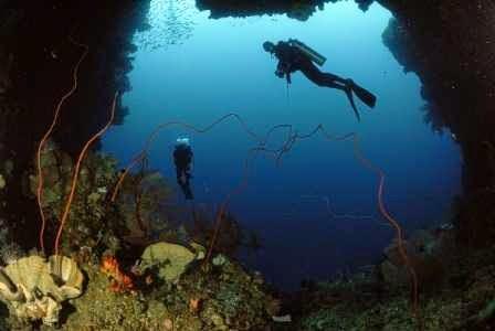 Nusa Pombo : wisata alam di ambon yang cocok untuk diving