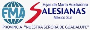 FMA Salesianas México Sur