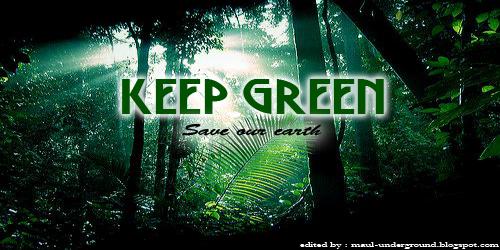 Selamatkan Hutan Sekarang Juga