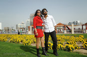 Park Telugu movie Photos Gallery-thumbnail-4