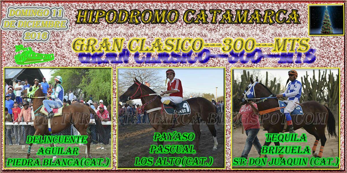 GRAN CLASICO---300---MTS