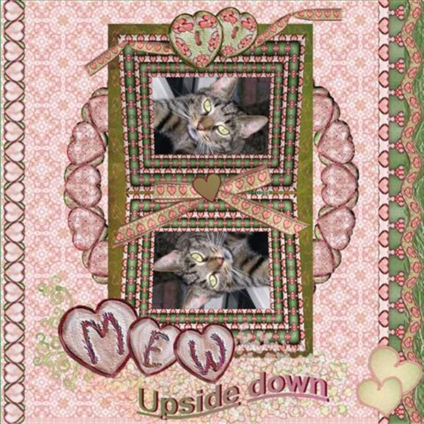 Mew..Up side Down..