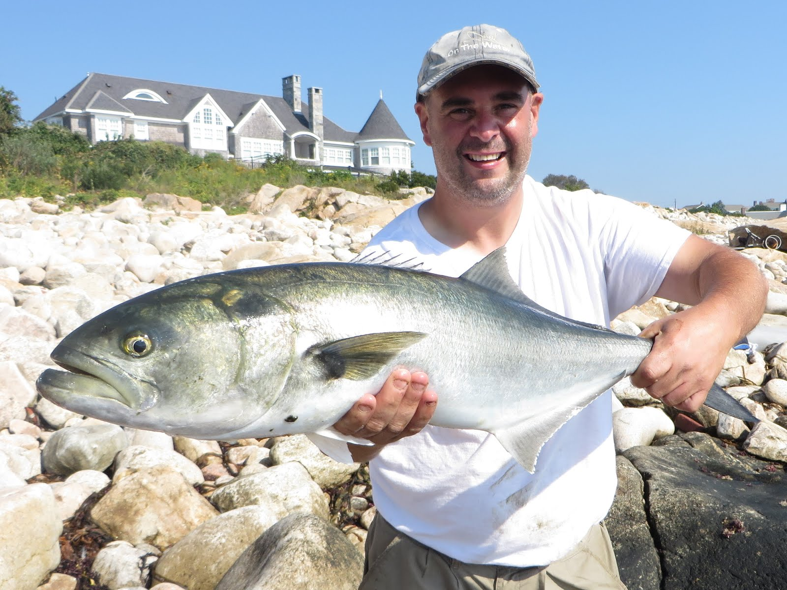 Big Bluefish