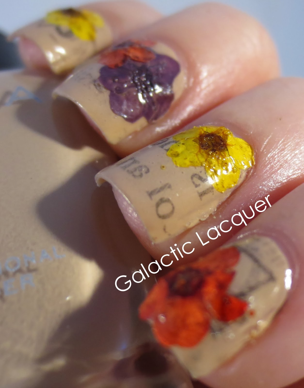 Galactic Lacquer: Nail Art with Newsprint and Dried Flowers