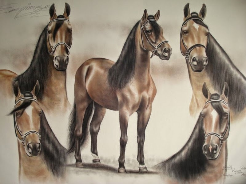 caballo-de-paso-fino-en-oleo
