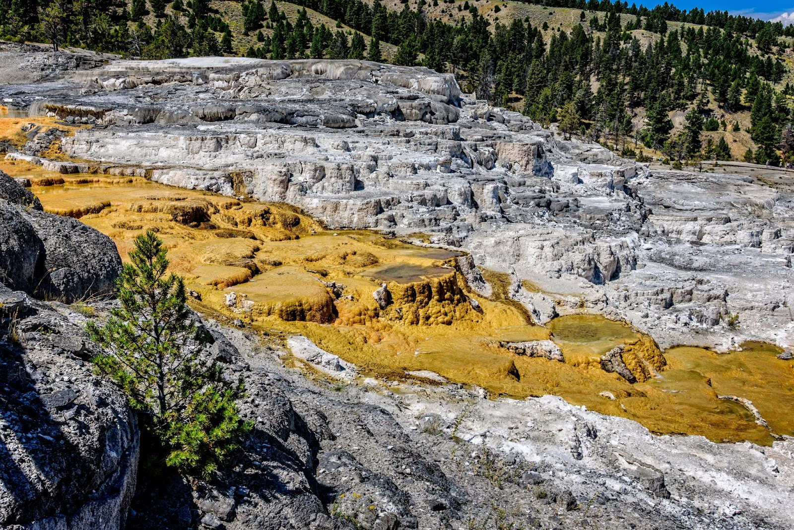 Binnshire backpacks and beer wyoming august 10 17 for Minerva terrace yellowstone