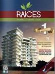 revista raices 8-12