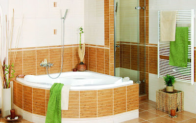Interior Decoration Cozy Bathroom Design